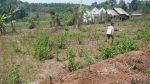 tanah-jual-dijual-mijen-semarang-t1-068-1