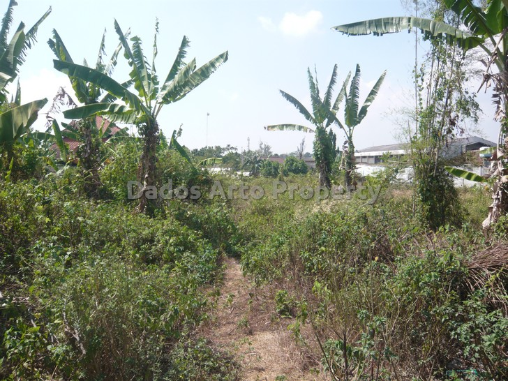 tanah-jual-dijual-srondol-sari-semarang-t1-135-2